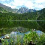 Trip to Altai Ahamkara
