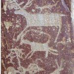 petroglyphs Ahamkara trip to altai